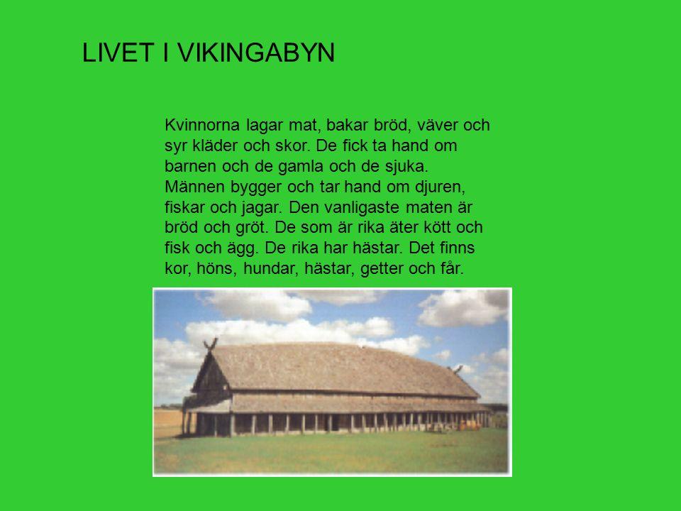 LIVET I VIKINGABYN