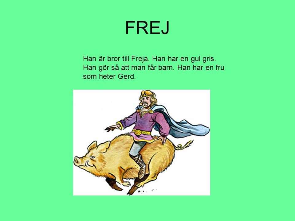 FREJ Han är bror till Freja. Han har en gul gris.