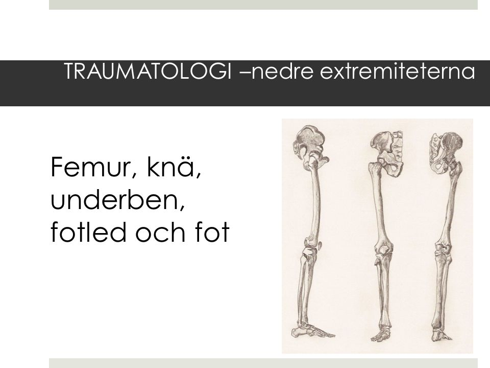 TRAUMATOLOGI –nedre extremiteterna