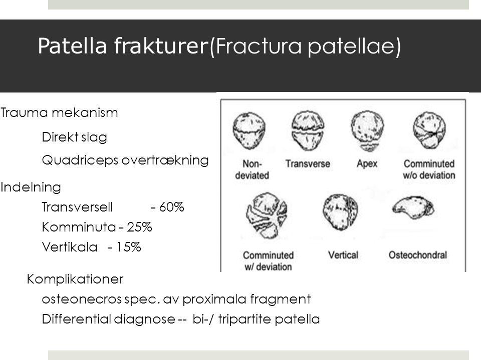 Patella frakturer(Fractura patellae)