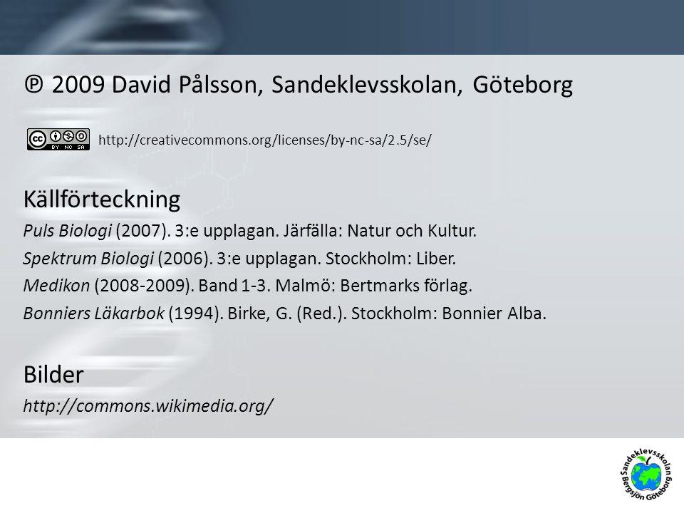 ℗ 2009 David Pålsson, Sandeklevsskolan, Göteborg