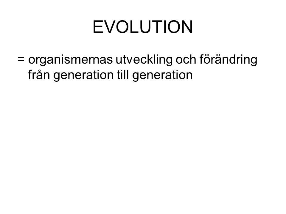 EVOLUTION = organismernas utveckling och förändring från generation till generation