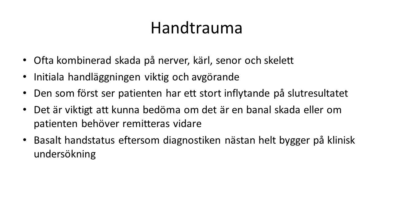 Handtrauma Ofta kombinerad skada på nerver, kärl, senor och skelett