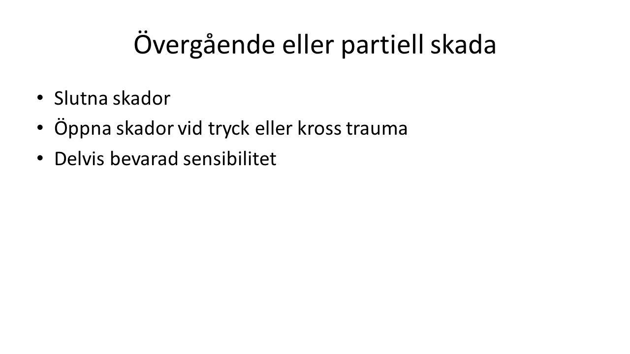 Övergående eller partiell skada