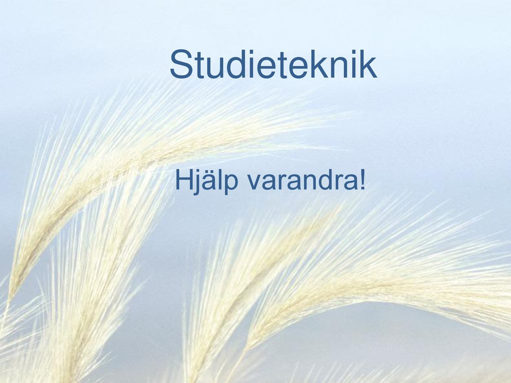 Studieteknik Hjälp varandra!