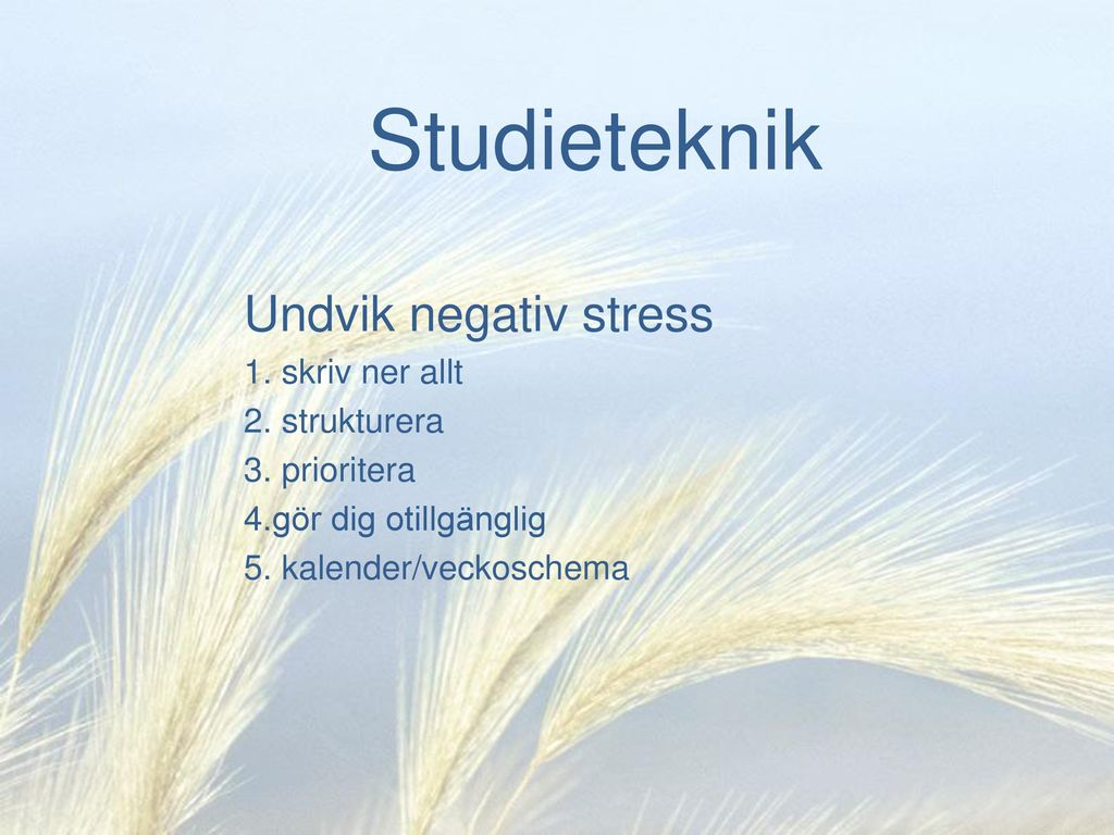 Studieteknik Undvik negativ stress skriv ner allt strukturera