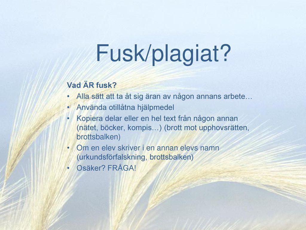 Fusk/plagiat Vad ÄR fusk