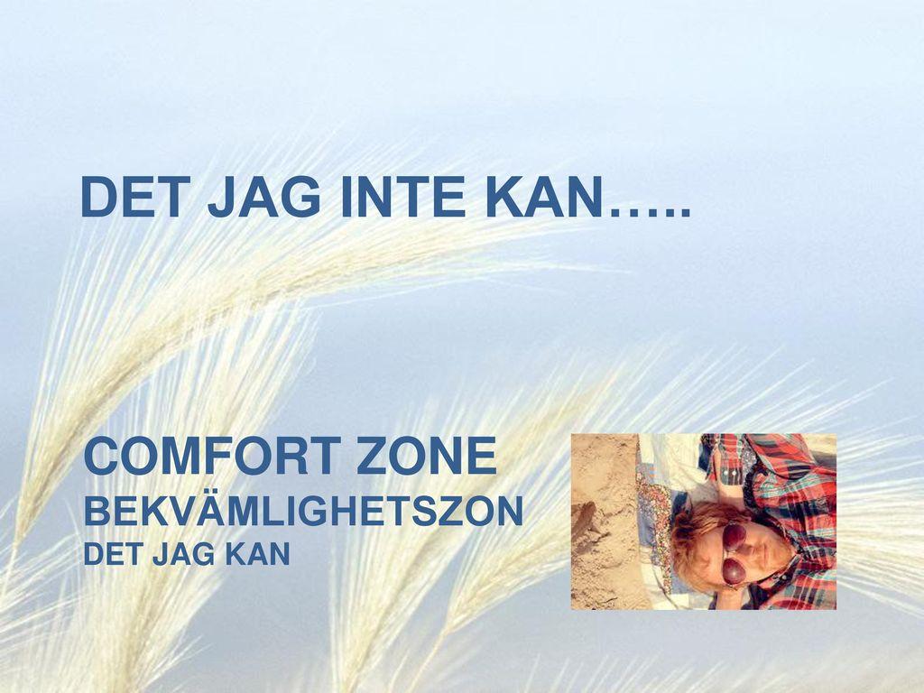 Comfort Zone bekvämlighetszon det jag kan
