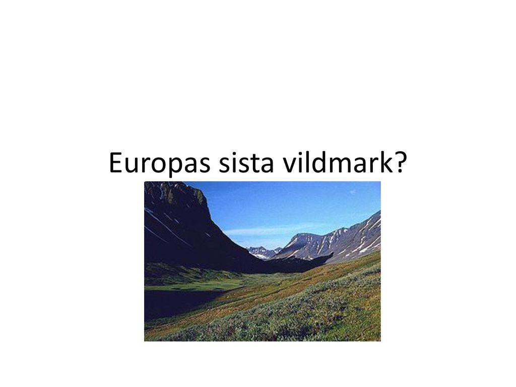Europas sista vildmark
