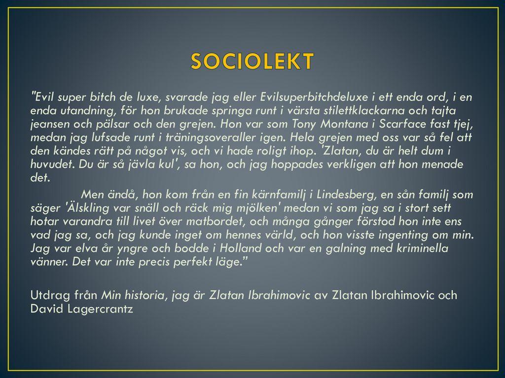 SOCIOLEKT