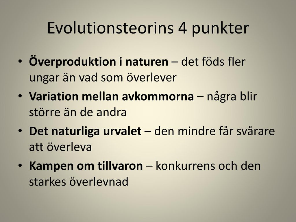 Evolutionsteorins 4 punkter