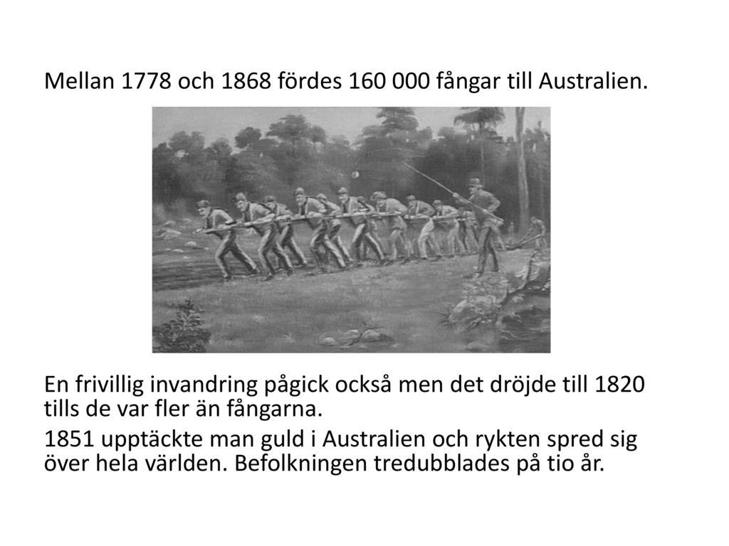 Mellan 1778 och 1868 fördes 160 000 fångar till Australien.