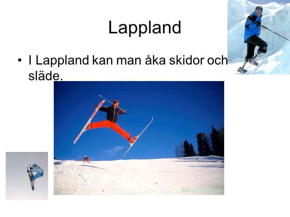 Lappland I Lappland kan man åka skidor och åka släde.