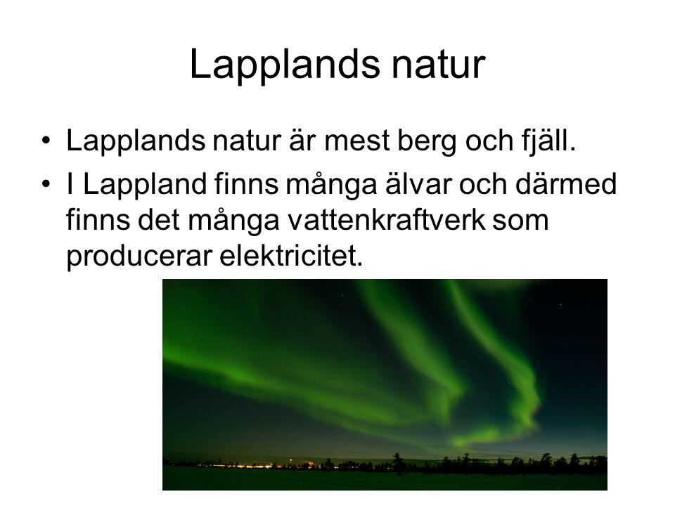 Lapplands natur Lapplands natur är mest berg och fjäll.