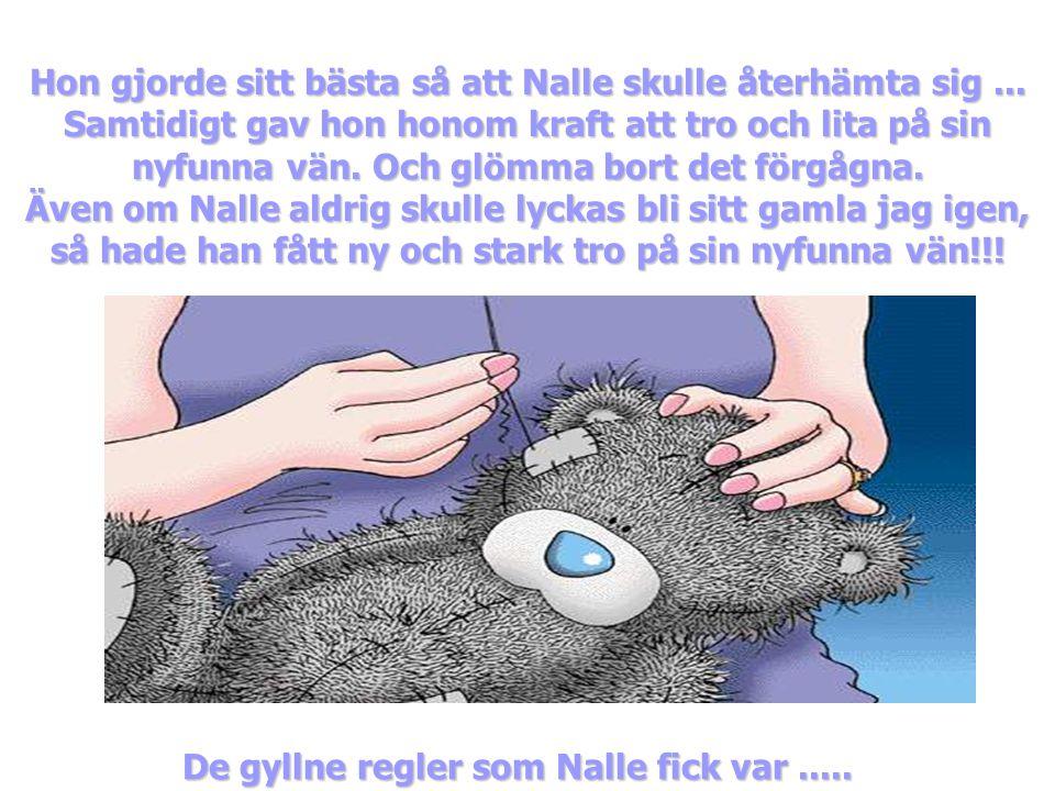 De gyllne regler som Nalle fick var .....