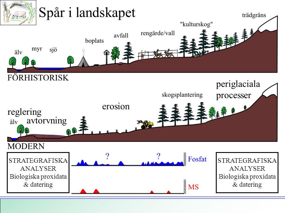 Spår i landskapet periglaciala processer erosion reglering avtorvning