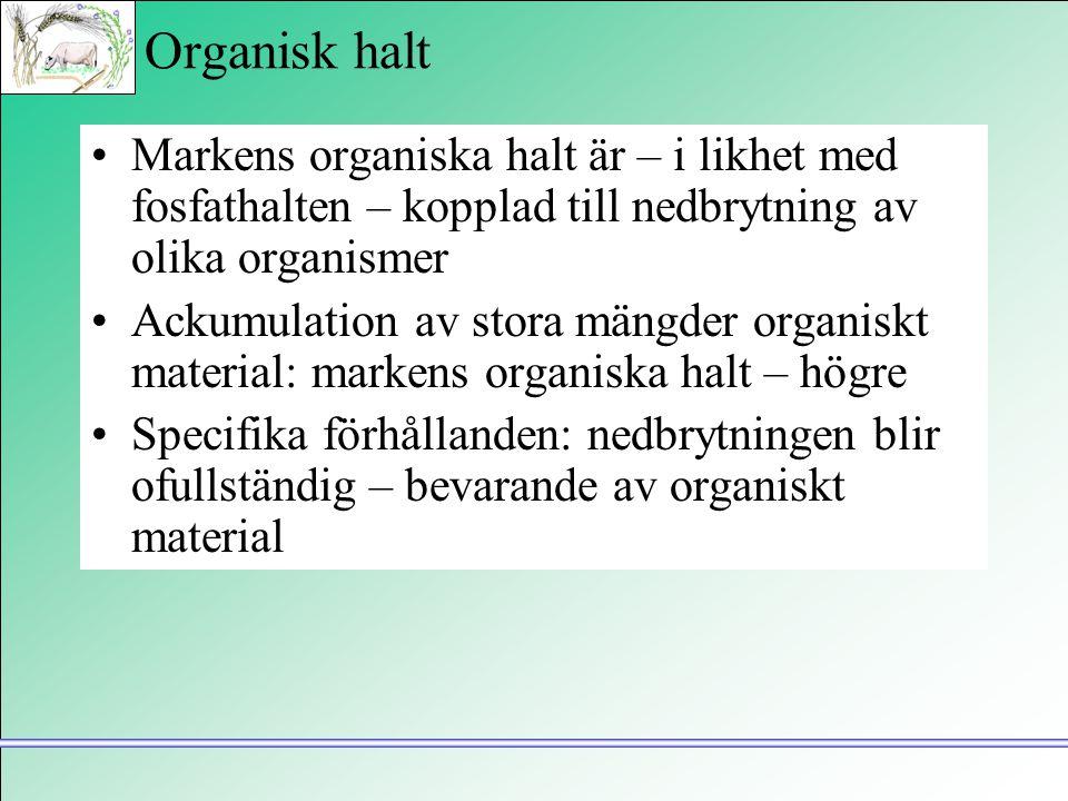Organisk halt Markens organiska halt är – i likhet med fosfathalten – kopplad till nedbrytning av olika organismer.