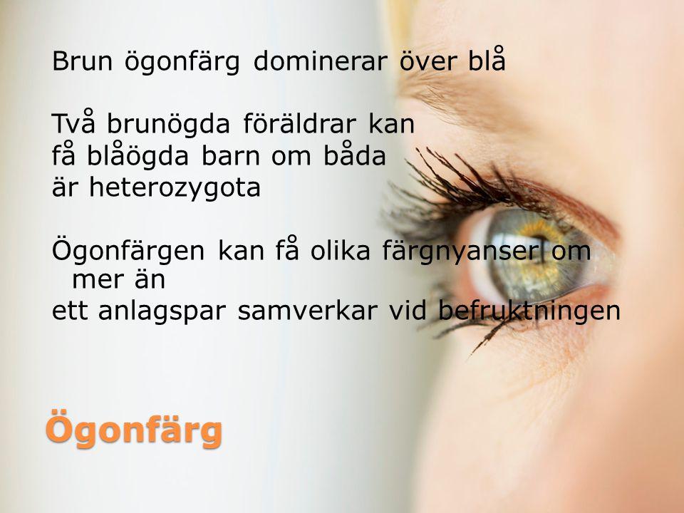 Brun ögonfärg dominerar över blå Två brunögda föräldrar kan få blåögda barn om båda är heterozygota Ögonfärgen kan få olika färgnyanser om mer än ett anlagspar samverkar vid befruktningen
