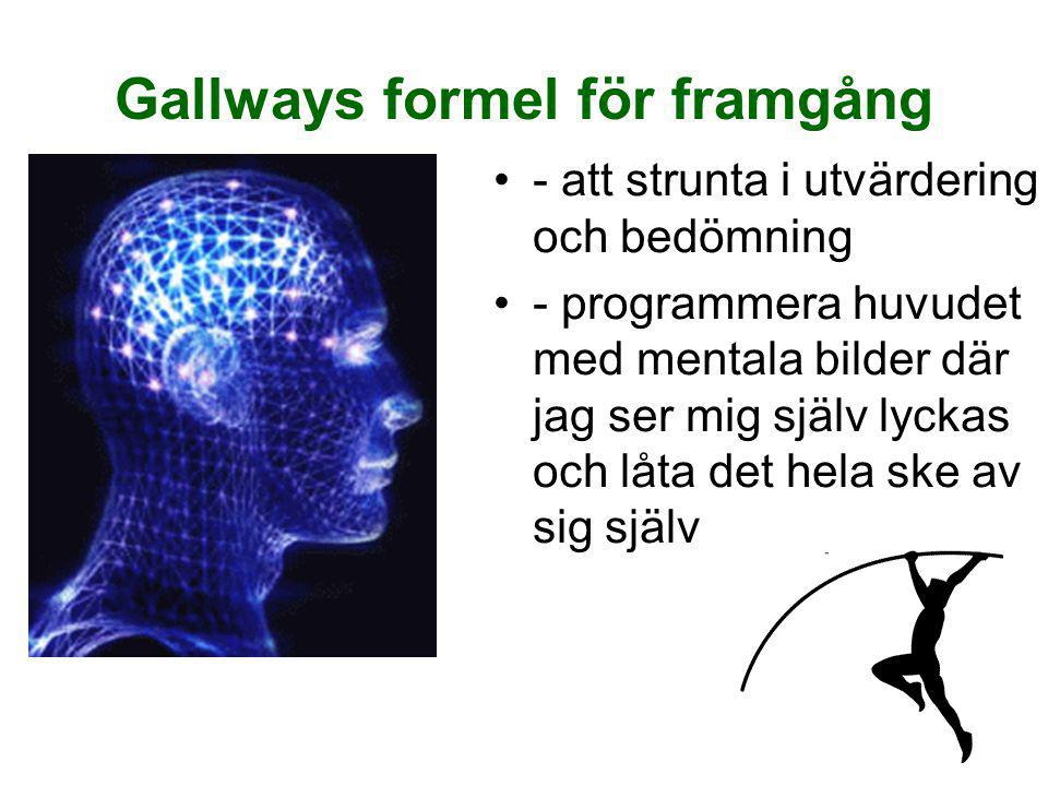Gallways formel för framgång