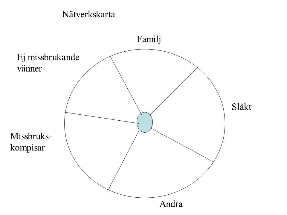 Nätverkskarta Familj Ej missbrukande vänner Släkt Missbruks- kompisar Andra