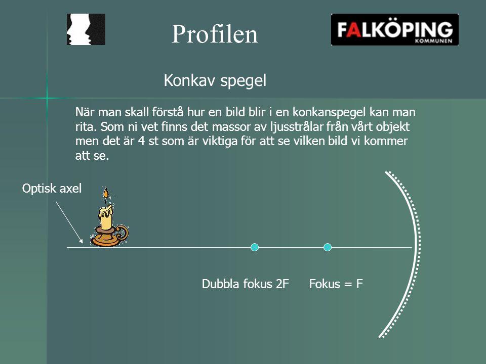 Profilen Konkav spegel