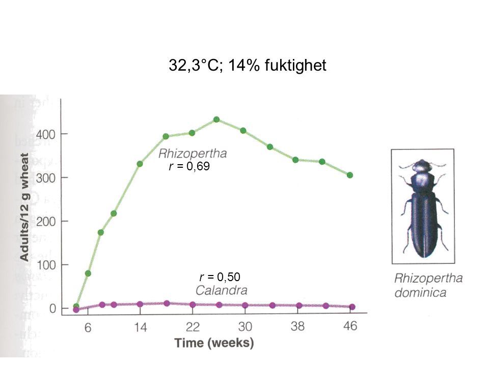 32,3°C; 14% fuktighet r = 0,69 r = 0,50 Fig 12.12, sid 189