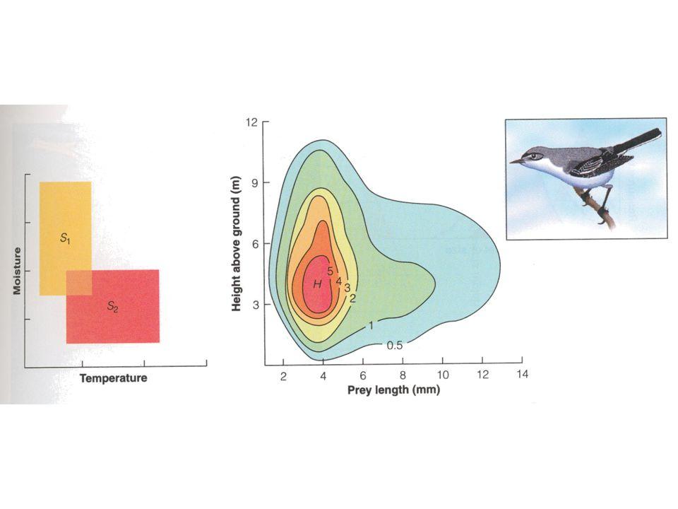 Fig 12.13, sid 191 Vänster figur: grafisk framställning två hypotetiska arters nischer med avseende på temp och fuktighet.