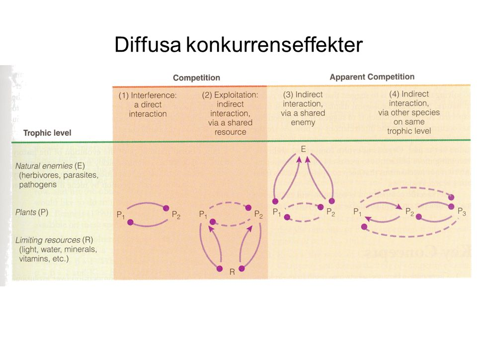 Diffusa konkurrenseffekter