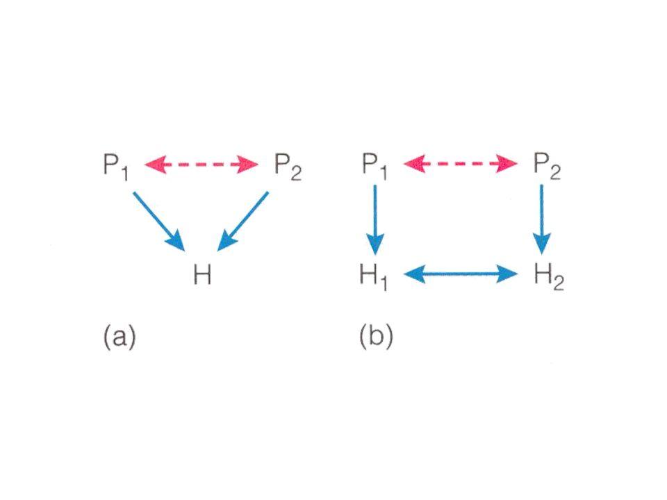 Fig 13.1, sid 207 Predatorer påverkar inte bara sina byten, utan också varandra via konkurrensmekanismer.