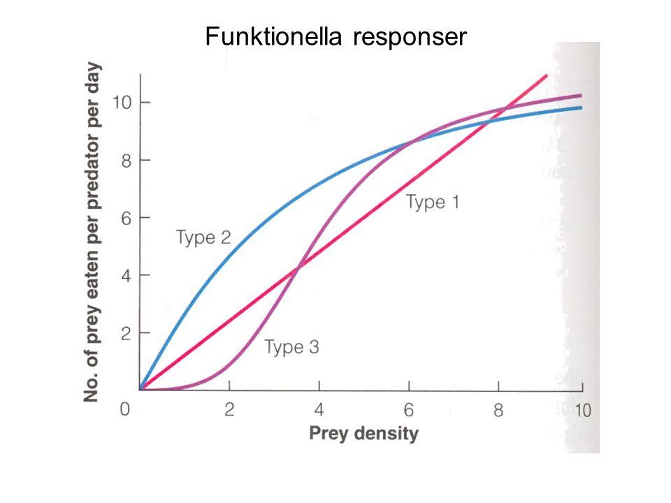 Funktionella responser