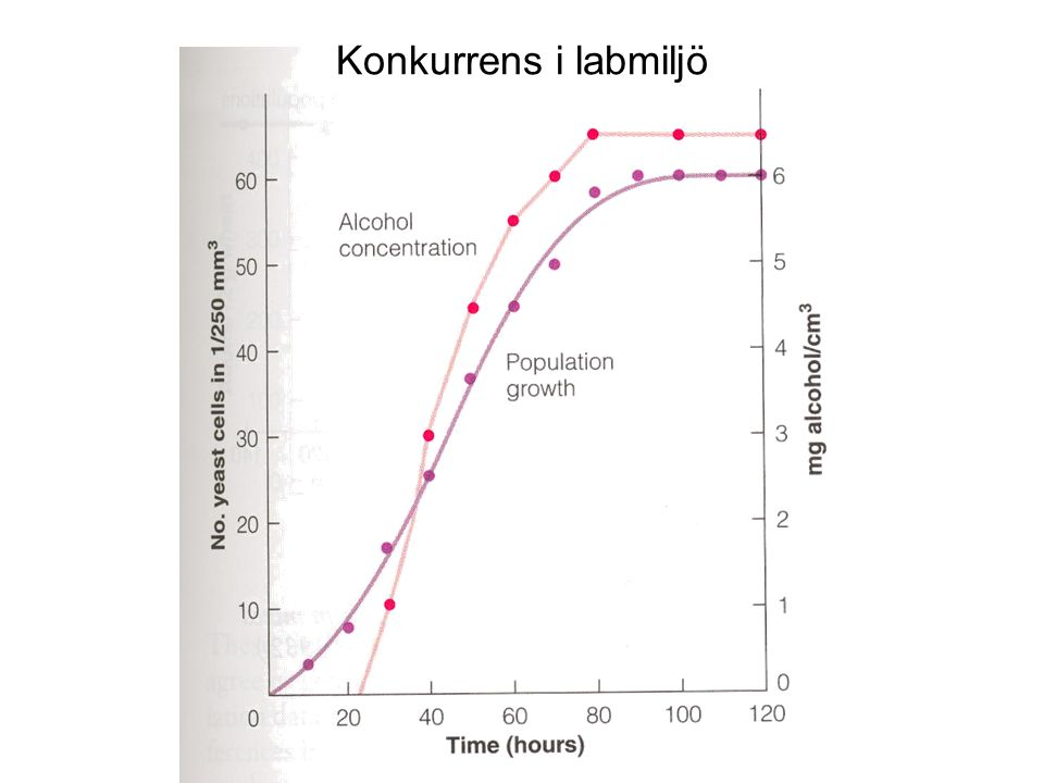 Konkurrens i labmiljö Fig 12.7, sid 187