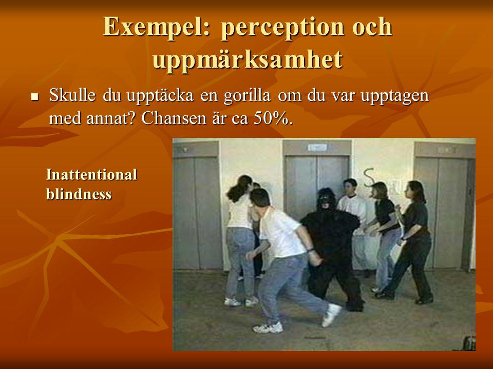 Exempel: perception och uppmärksamhet