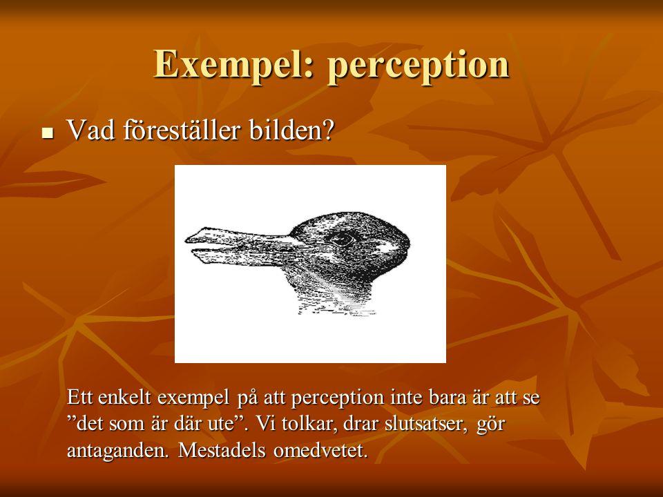 Exempel: perception Vad föreställer bilden