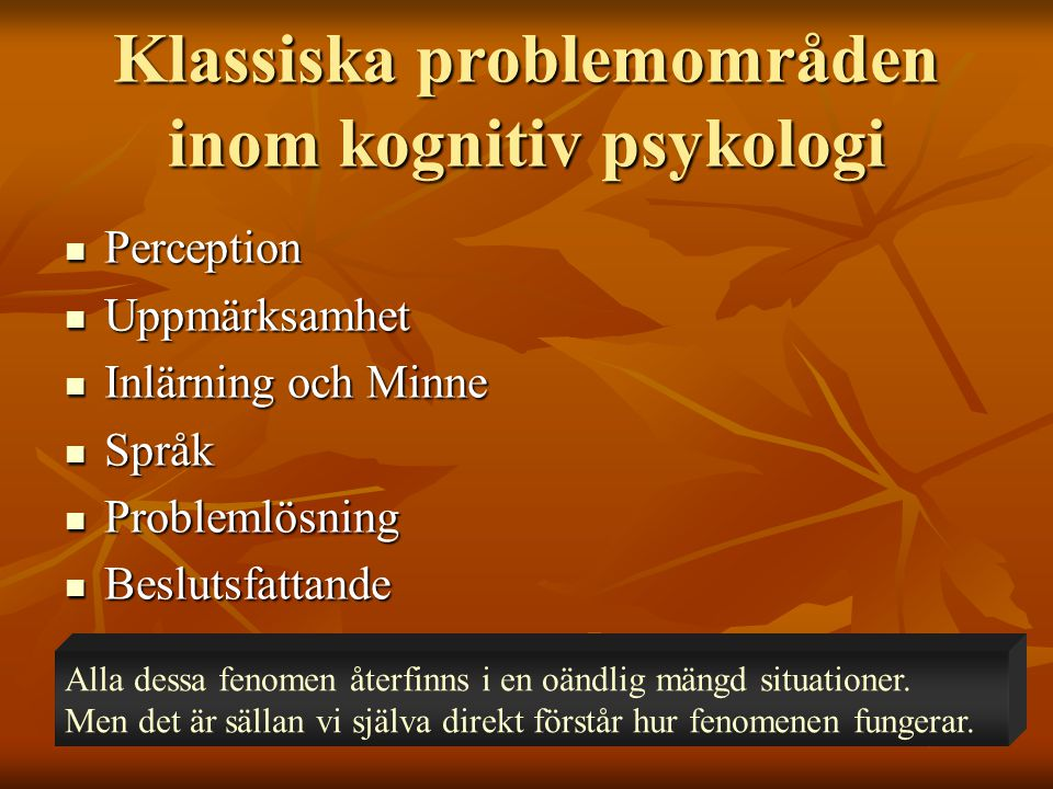 Klassiska problemområden inom kognitiv psykologi