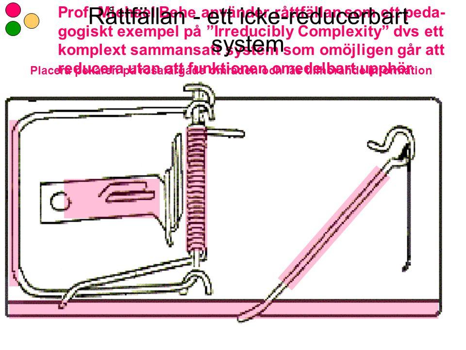 Råttfällan - ett icke-reducerbart system