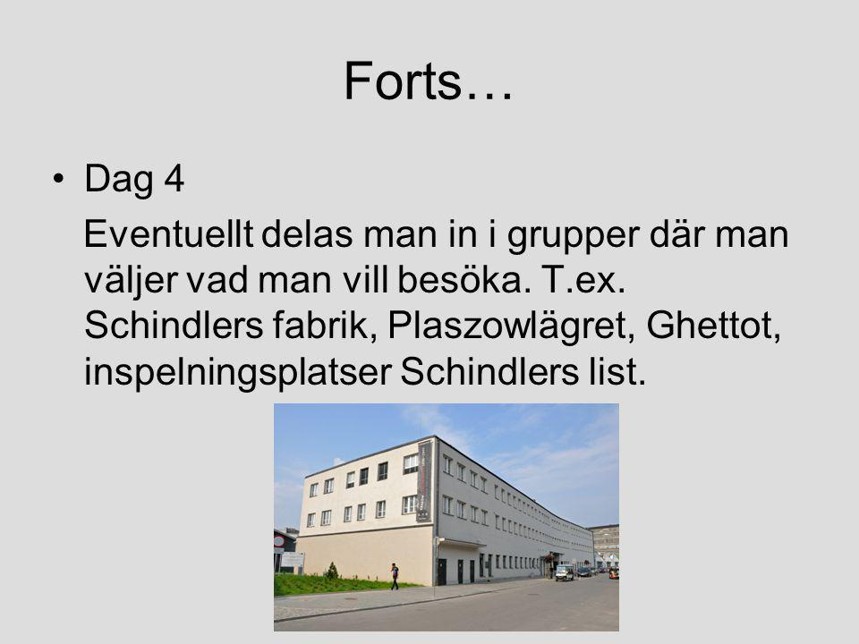 Forts… Dag 4.