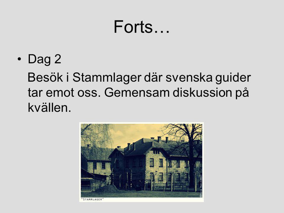 Forts… Dag 2 Besök i Stammlager där svenska guider tar emot oss. Gemensam diskussion på kvällen.