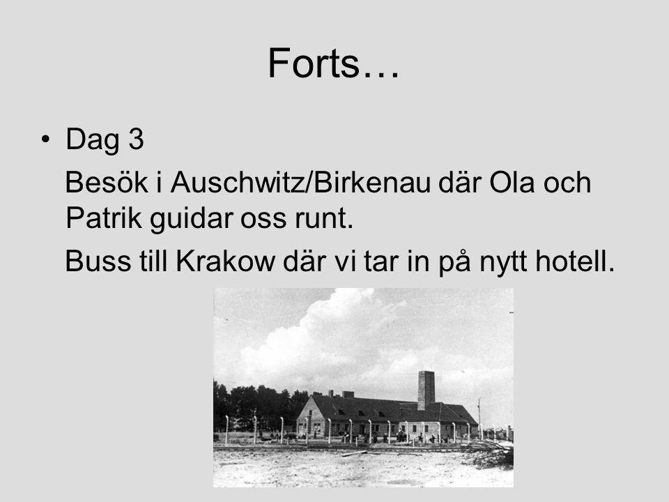 Forts… Dag 3. Besök i Auschwitz/Birkenau där Ola och Patrik guidar oss runt.
