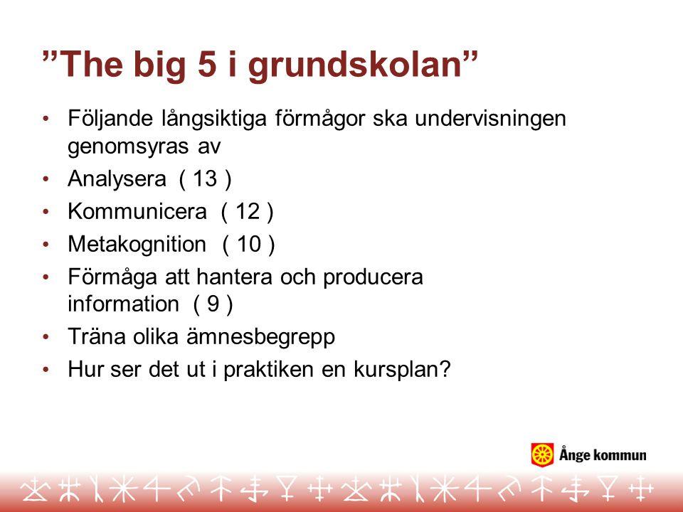 The big 5 i grundskolan