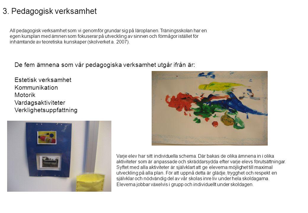 3. Pedagogisk verksamhet