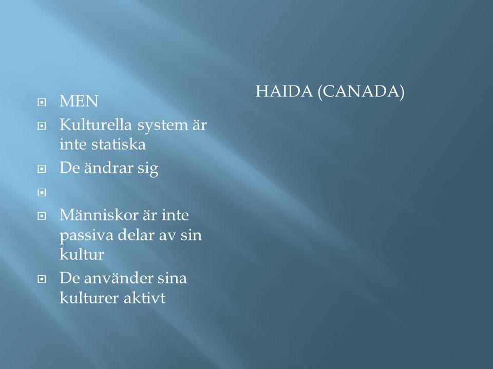 Haida (Canada) MEN. Kulturella system är inte statiska. De ändrar sig. Människor är inte passiva delar av sin kultur.
