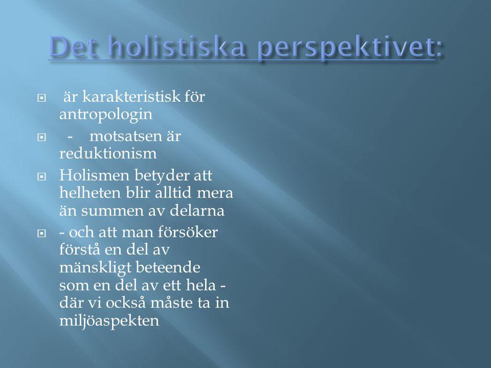 Det holistiska perspektivet: