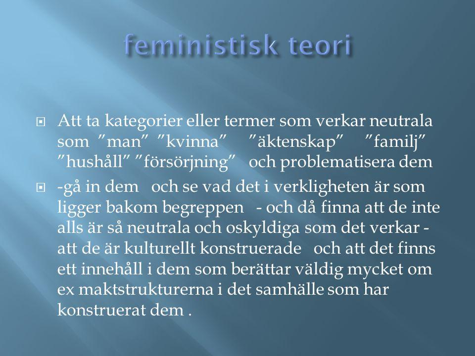 feministisk teori