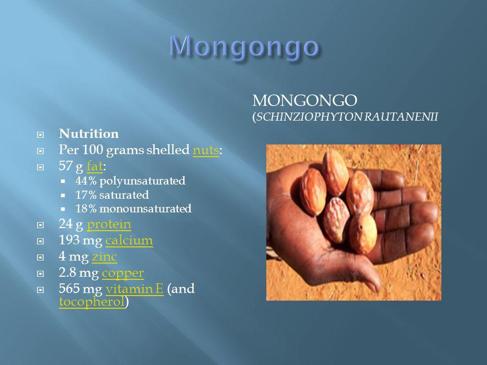 Mongongo Mongongo (Schinziophyton rautanenii Nutrition