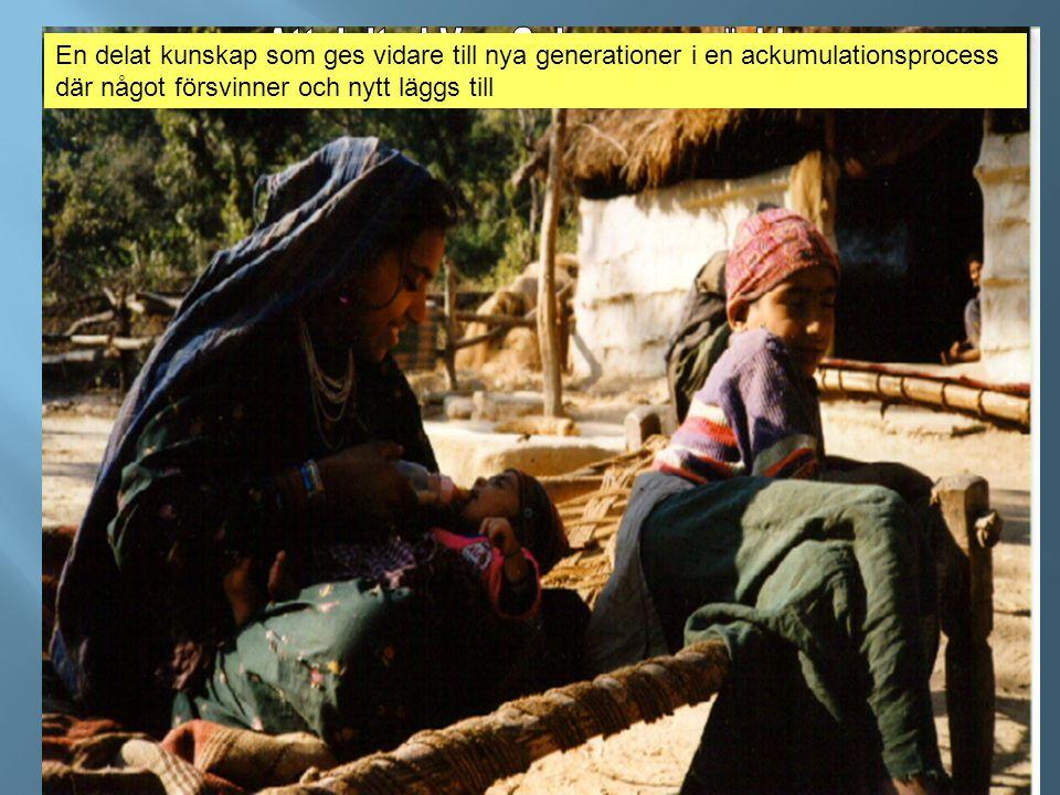 Att delta i Van Gujararnas värld