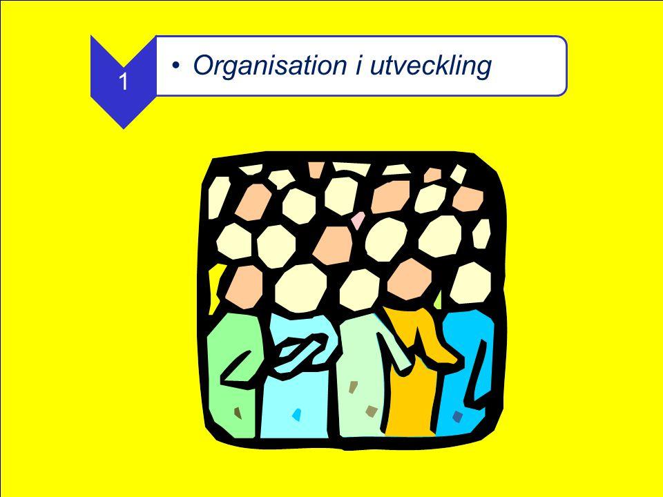 Organisation i utveckling