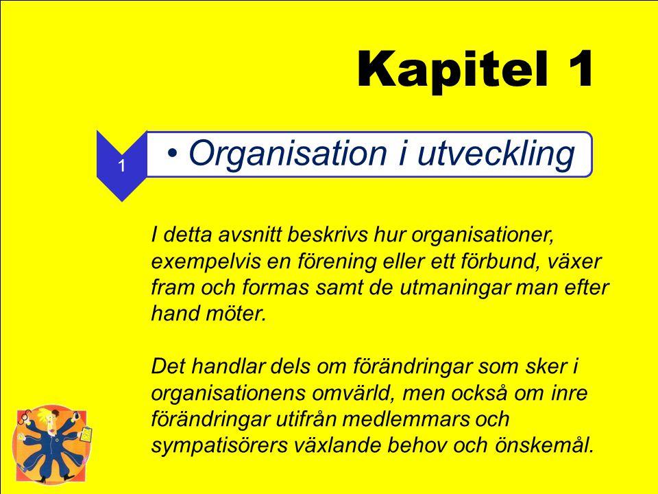 Kapitel 1 1. Organisation i utveckling.
