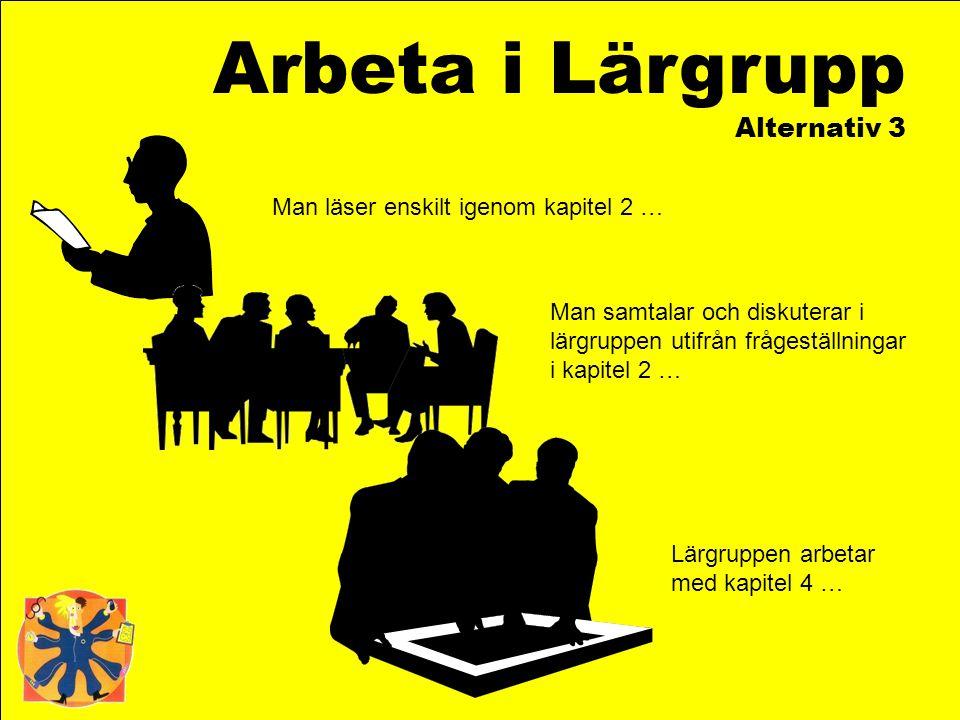 Arbeta i Lärgrupp Alternativ 3 Man läser enskilt igenom kapitel 2 …