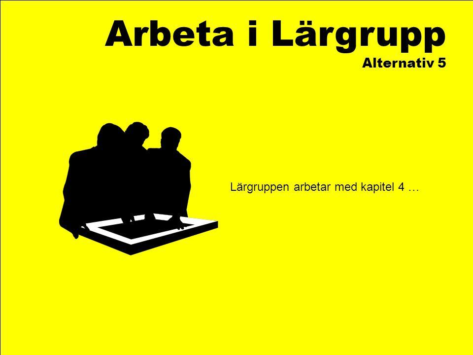 Arbeta i Lärgrupp Alternativ 5 Lärgruppen arbetar med kapitel 4 …