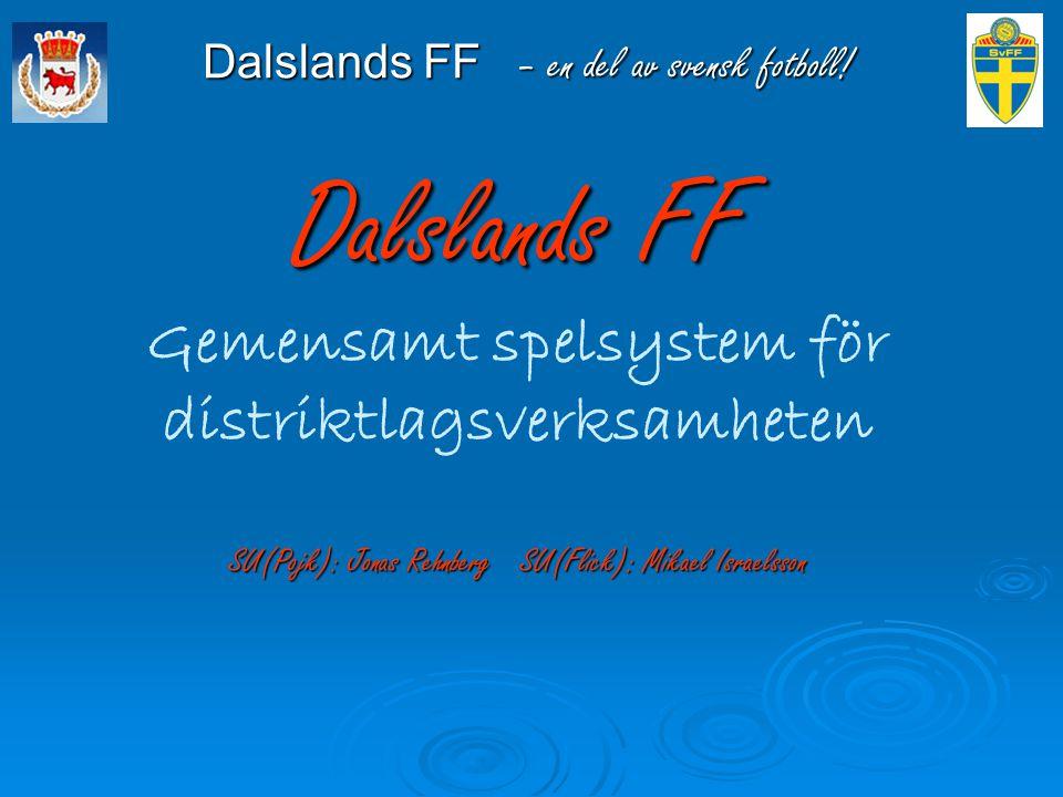 Dalslands FF – en del av svensk fotboll!